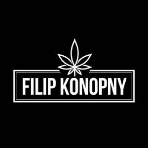Suszone Kwiaty Konopi CBD - Filip Konopny